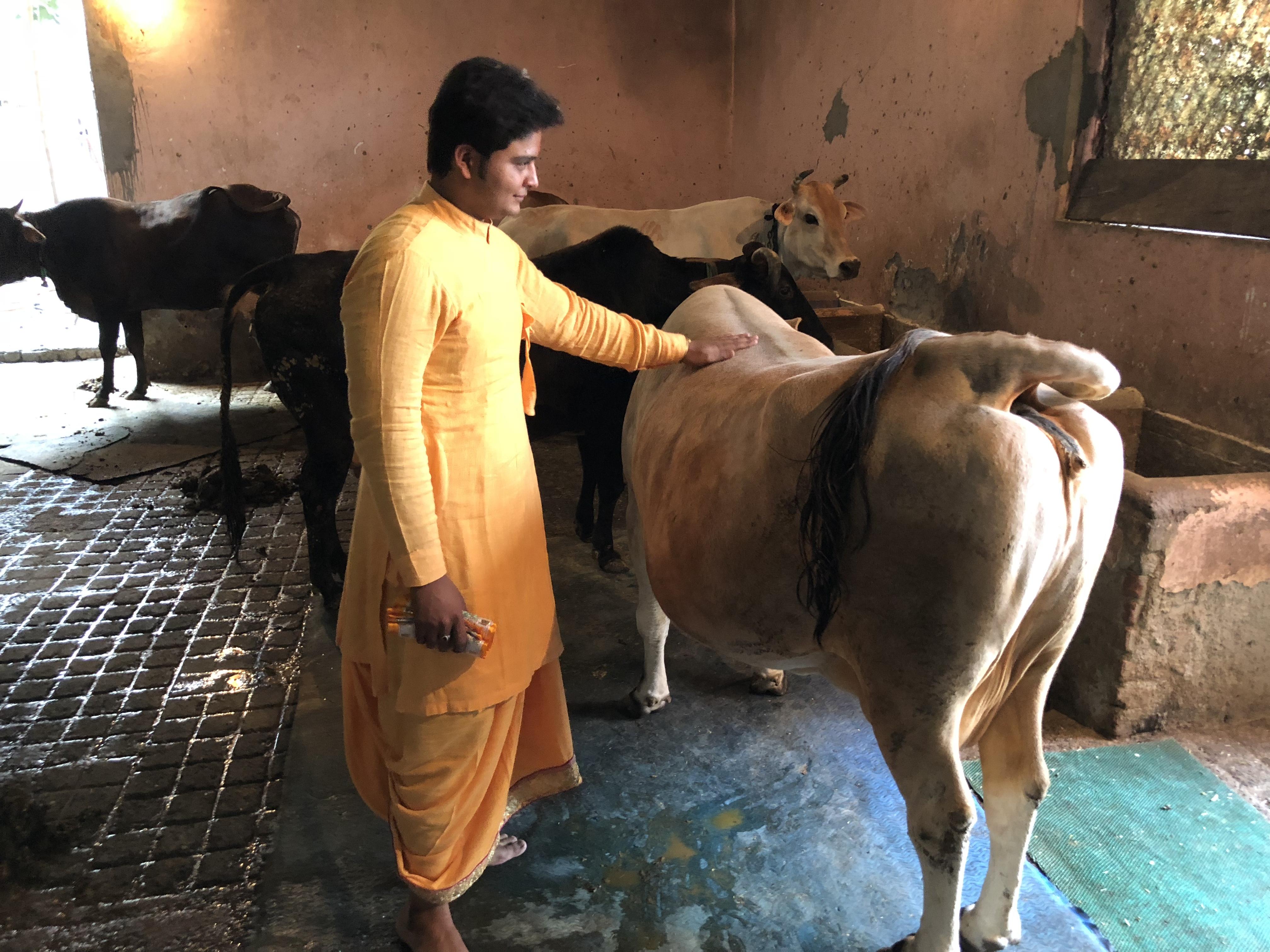 Shree Ji Barsana Mandal Trust